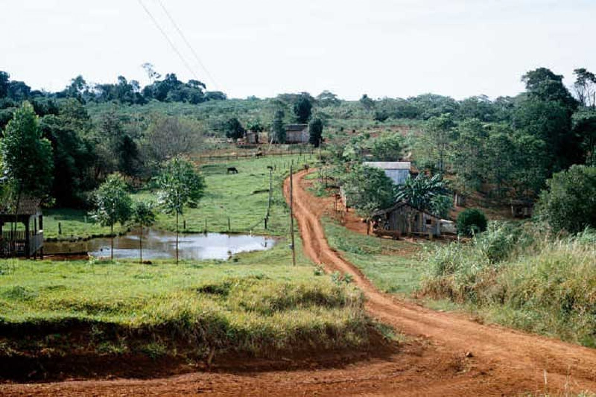 Caminos privados inscritos como públicos