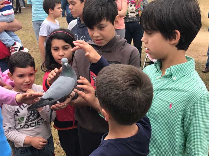 d II-encuentro-caza-y-campo-palomas