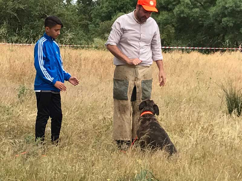 II-encuentro-caza-y-campo-perros-de-muestra