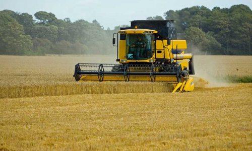 """¿Debe modificarse el """"pago verde"""" prohibiéndose el uso de fitosanitarios?"""