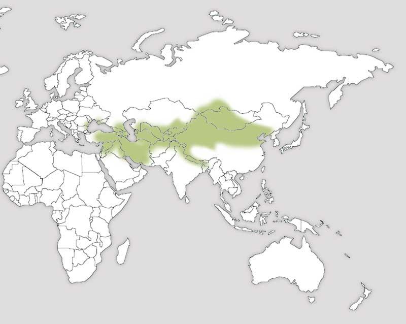mapa-distribucion-perdiz-chucar