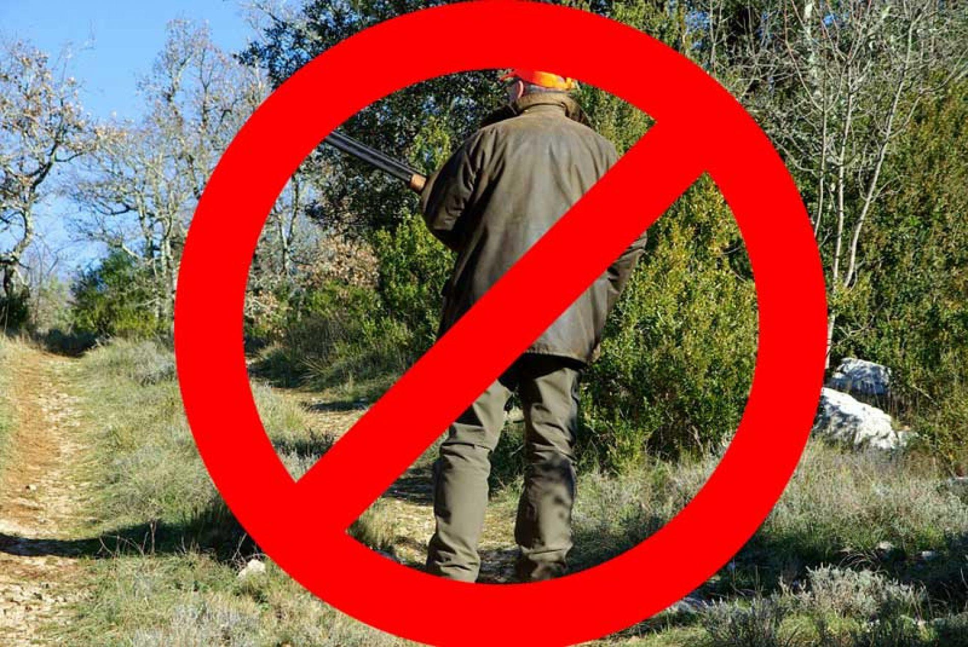 El Tribunal de Justicia de Castilla y León impide la caza en esta comunidad