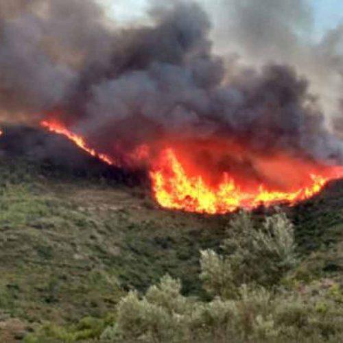 La FCCV resalta la colaboración de los cazadores en la de extinción de incendios