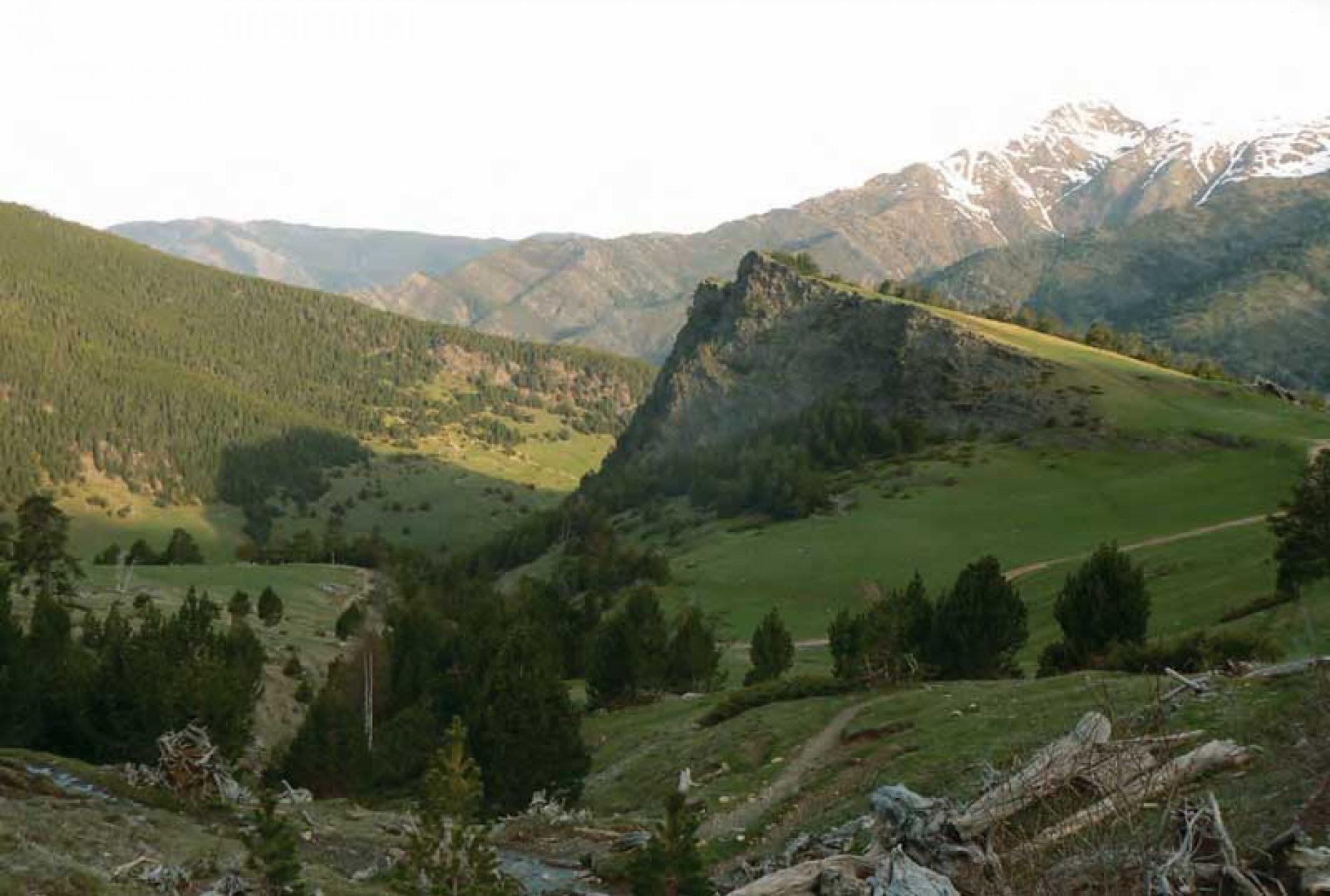 Reserva de Caza del Alt Pallars