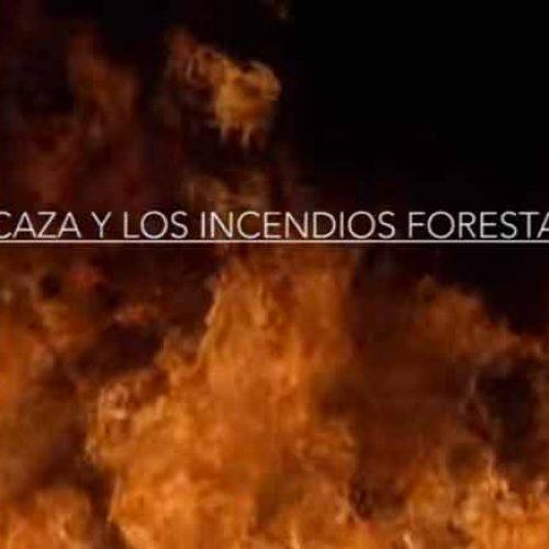 Artemisan reivindica la actividad cinegética en la prevención de incendios