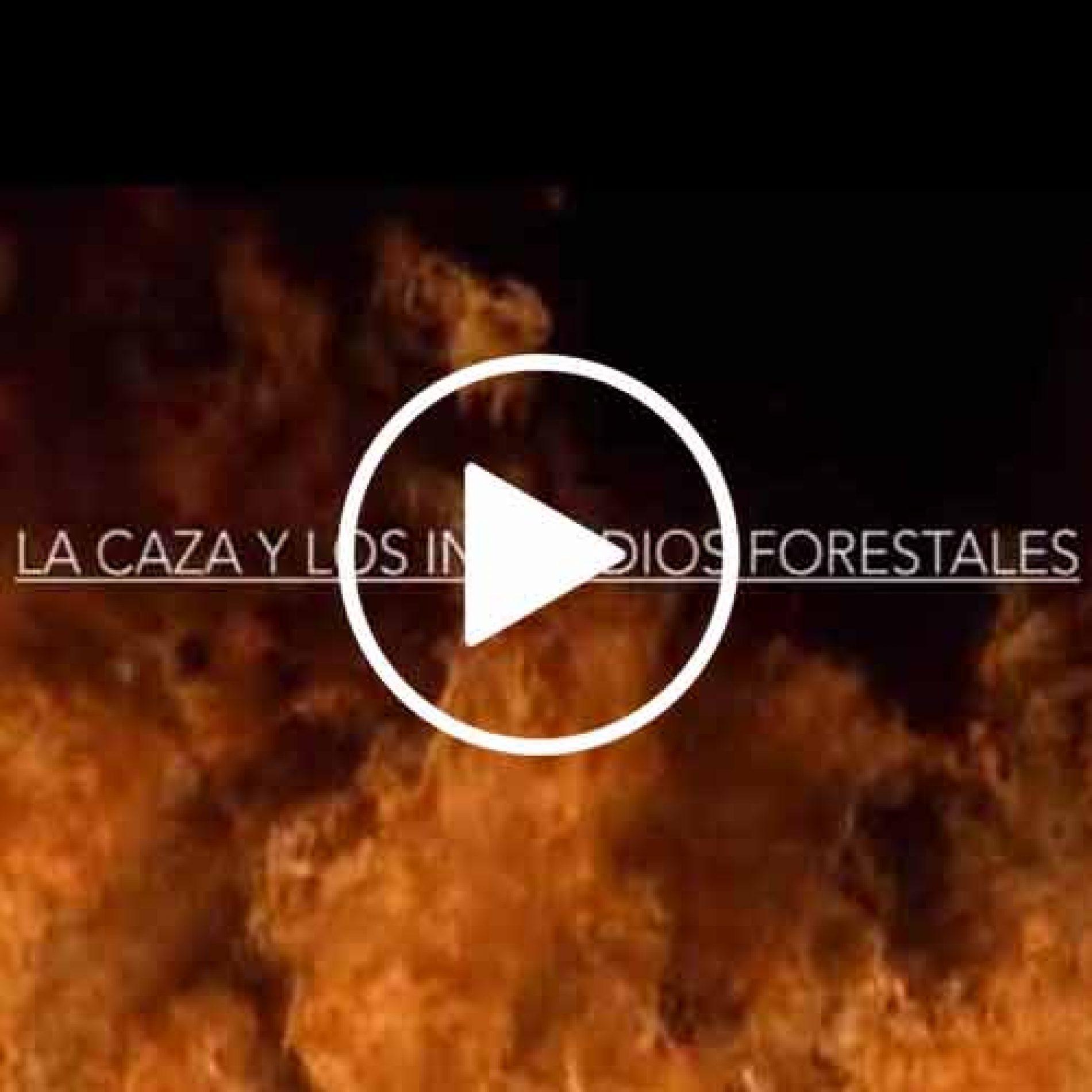 Documental, La caza y los incendios forestales