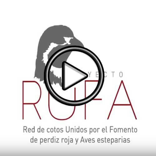 Proyecto RUFA para la recuperación de la perdiz