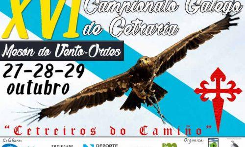XVI Campeonato Gallego de Cetrería en Ordes