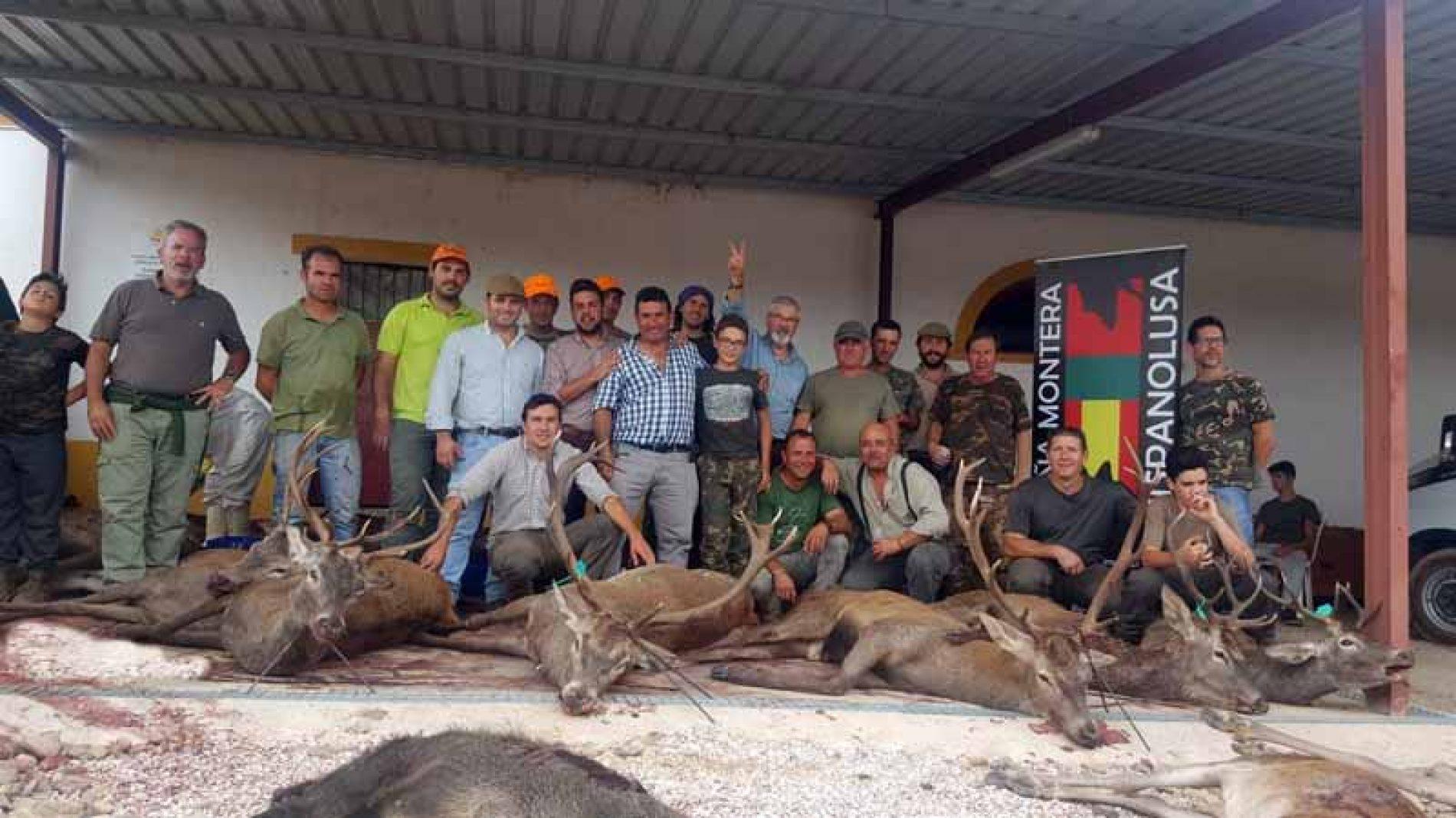 Gran trabajo de la rehalas en la montería Herdade da Serpa