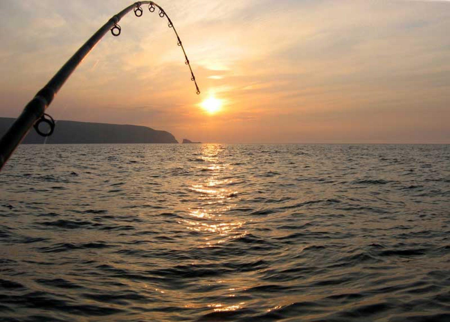 El congreso pide la elaboración de una estrategia nacional de caza y pesca
