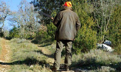 Admitida la proposición de ley para modificar la Ley de Biodiversidad