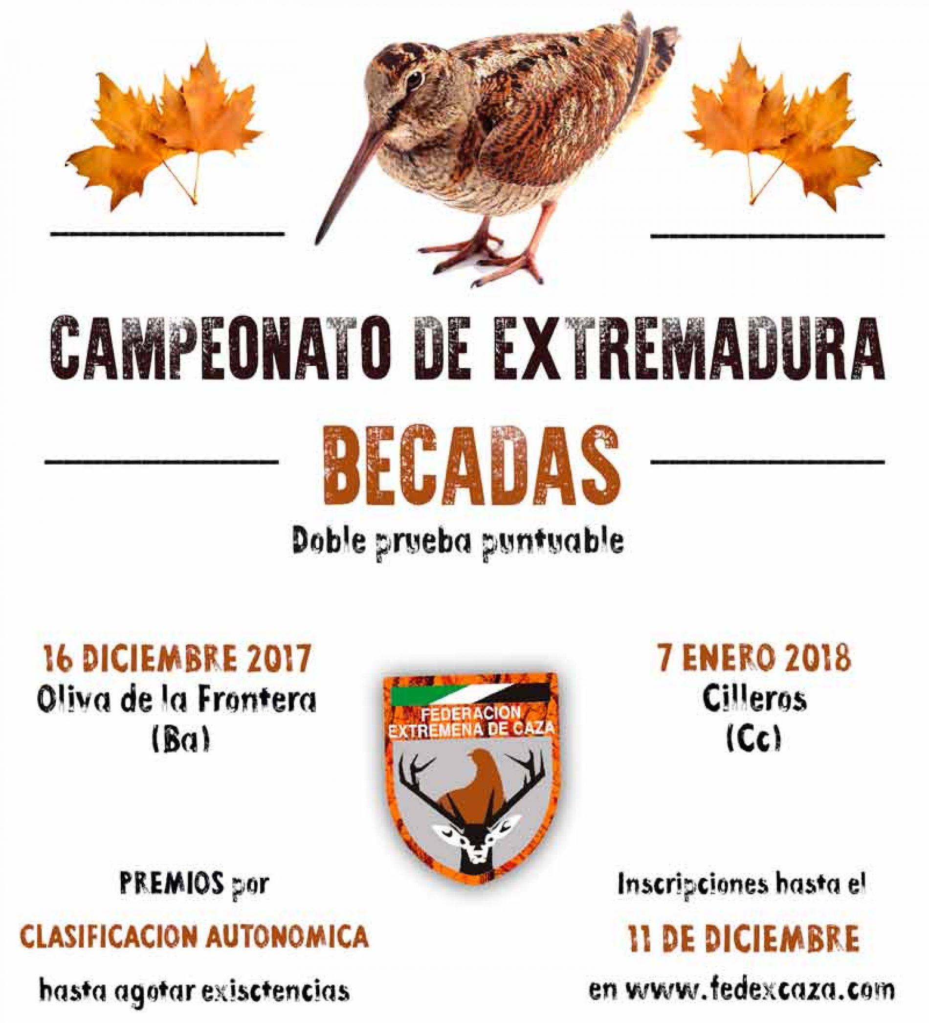 Campeonato de Becadas de Extremadura el 16 de diciembre y el 7 de enero