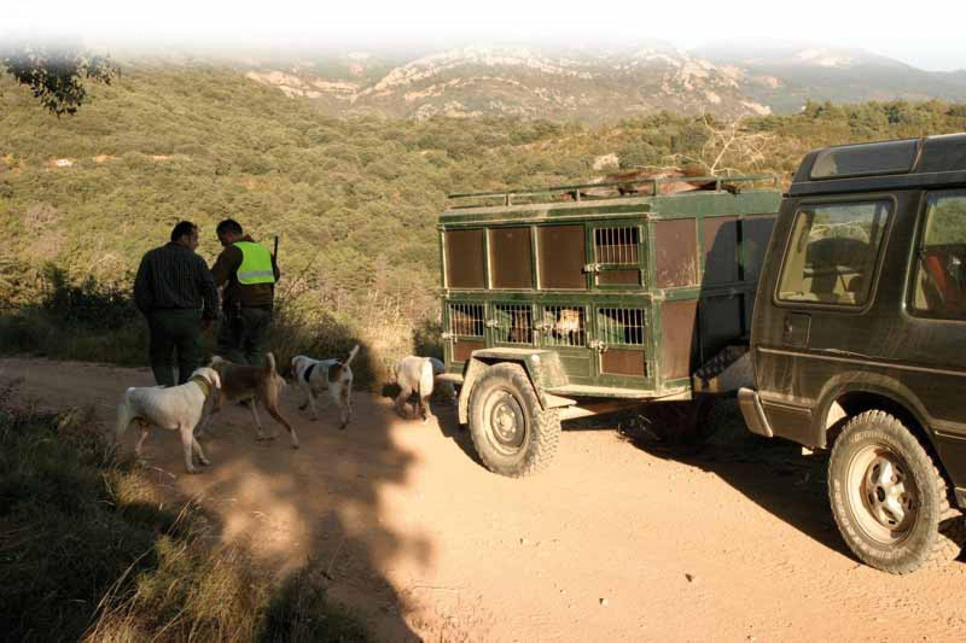 Homenaje a los perros de caza mayor y a los perreros