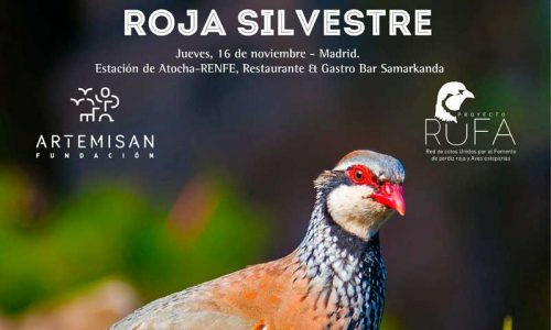 I jornada sobre Perdiz Roja Silvestre organizada por la Fundación Artemisan