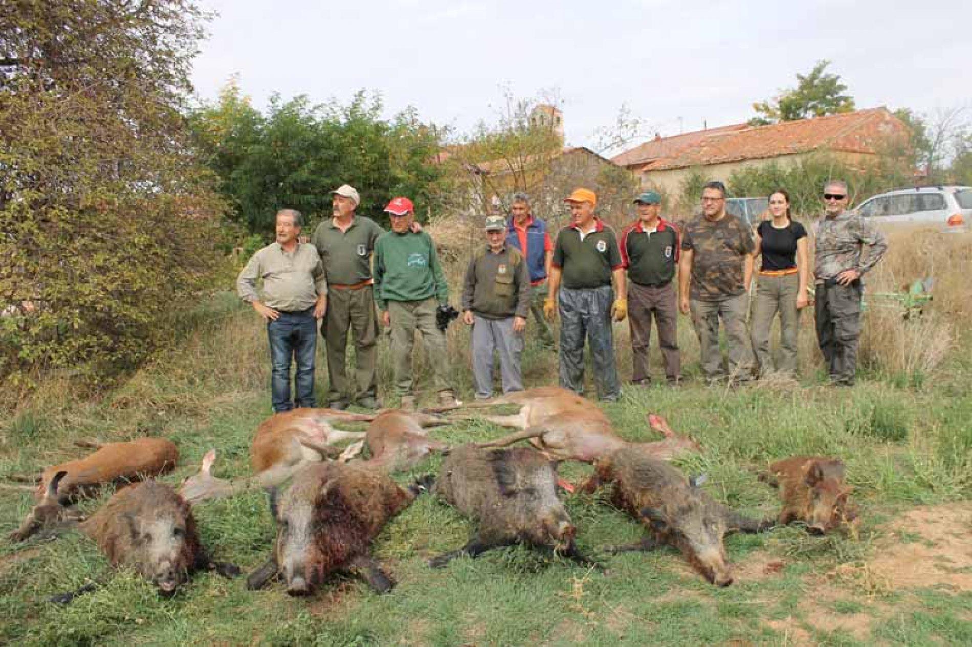 42 disparos para 5 jabalíes en la montería en Valderrueda