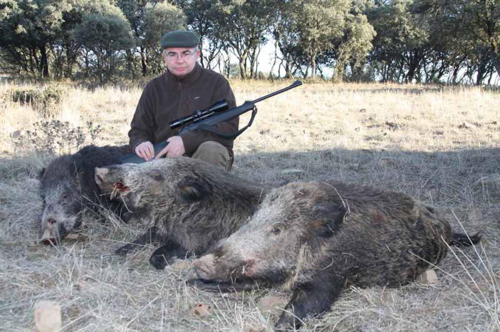 Selección de la mejor munición para cazar en montería y espera de jabalí