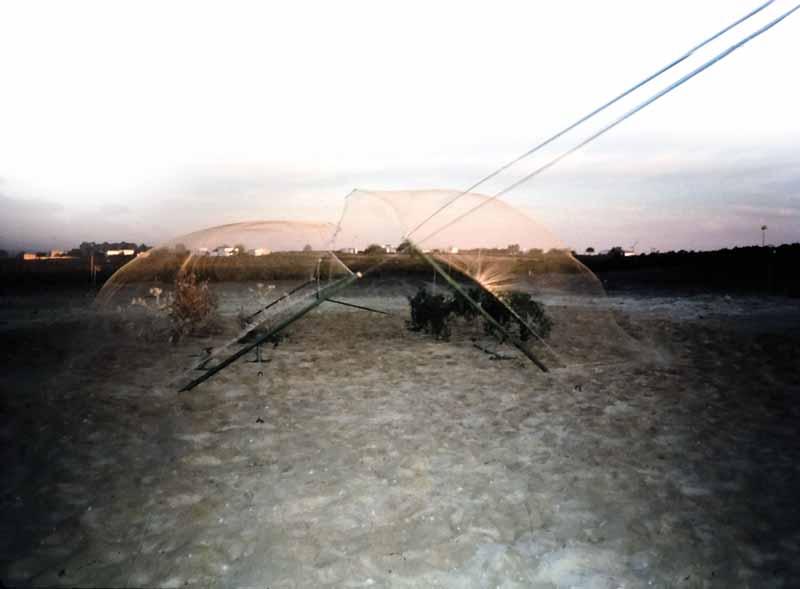 silvestrismo red tiro de cuerda