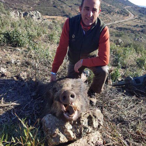 Menos jabalís de los esperados en la montería de Sierra Pinos