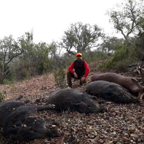 La caza repartida entre sierra y llanas en la montería Chaves