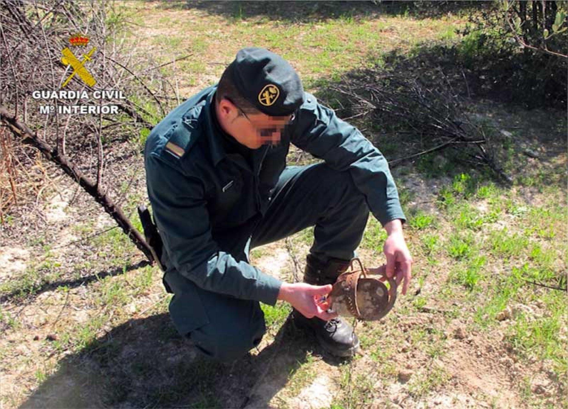 La Guardia Civil ha detenido a 16 personas por el uso ilegal de venenos para la caza