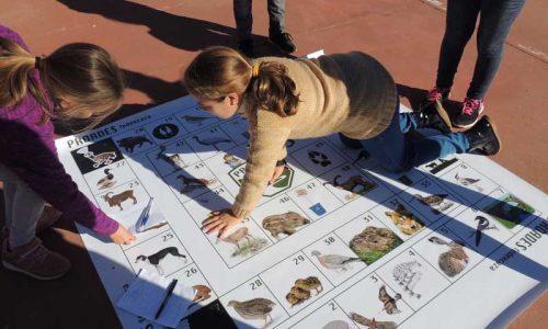 Arranca la 2ª edición del proyecto escolar 'Caza y Naturaleza'