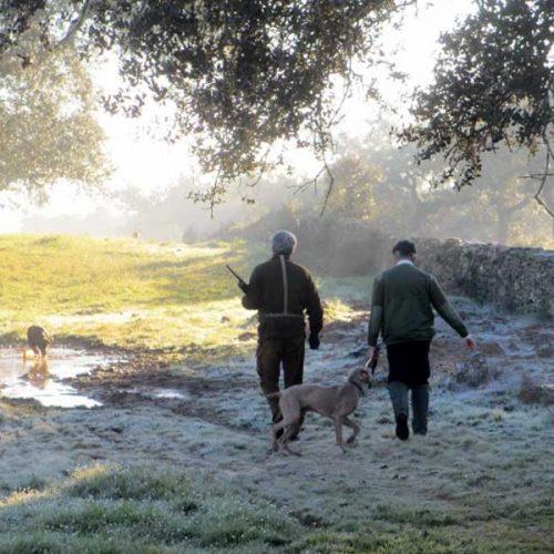 Extremadura ha vivido la peor temporada de caza menor de la historia