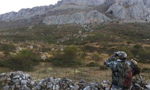 Caza con arco de un rebeco en los montes de León