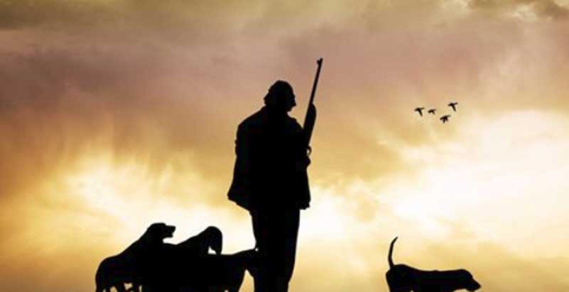 El Parlamento de la Rioja pretende tramitar una norma que otorga a los animales una protección superior a la de los seres humanos