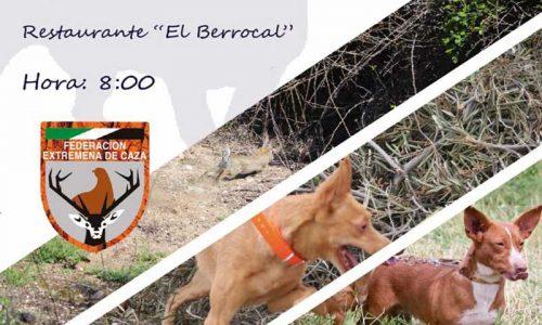 Campeonato de Extremadura de Trabajo para Podenco Andaluz y Maneto