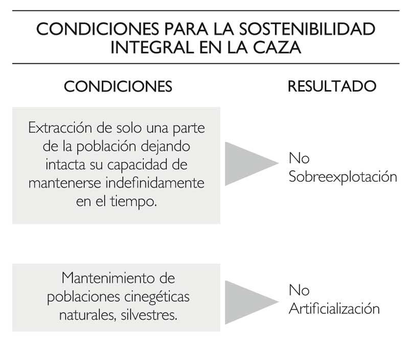 caza-sostenible-condiciones.jpg