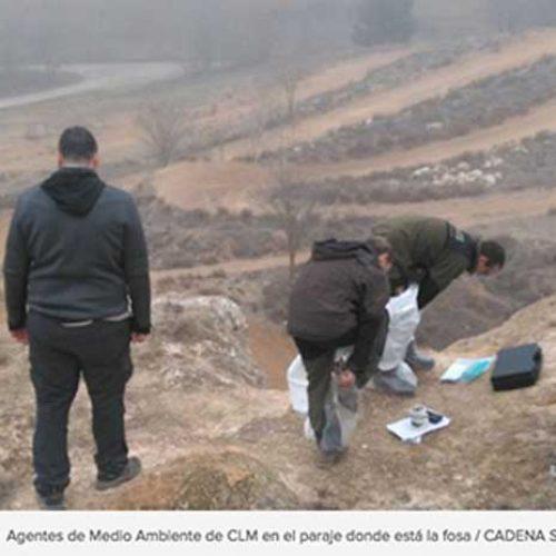 La RFEC pide al SEPRONA que investigue los cadáveres de perros encontrados en una fosa
