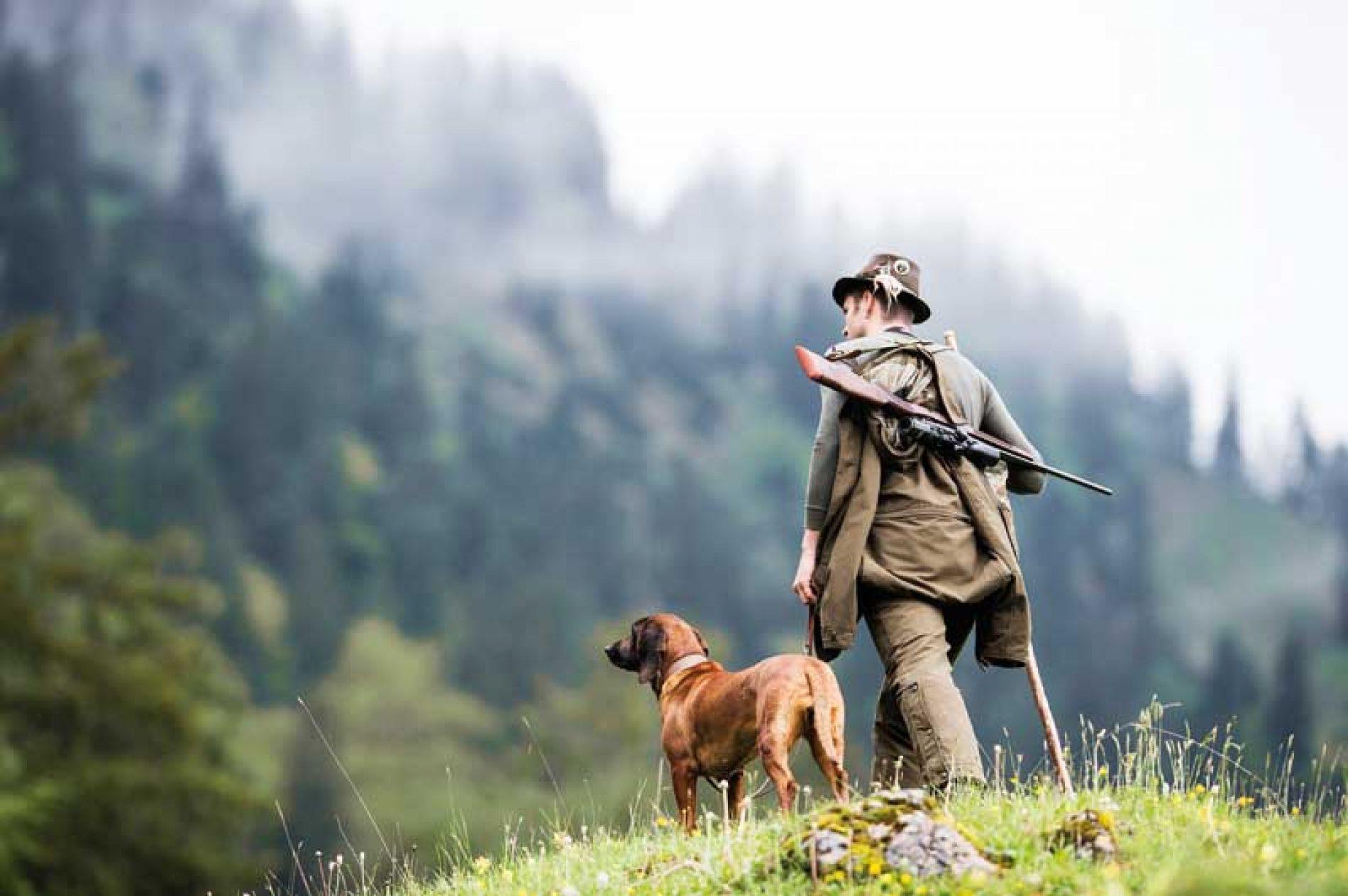 5 Visores y Binoculares Steiner-Optik para todo tipo de caza