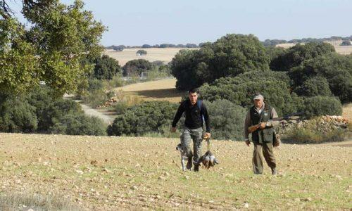 Coto Sotuélamos, historia de la caza de perdices en España