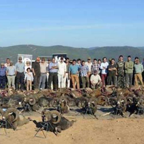 Más de 450 disparos en la montería de Azahares
