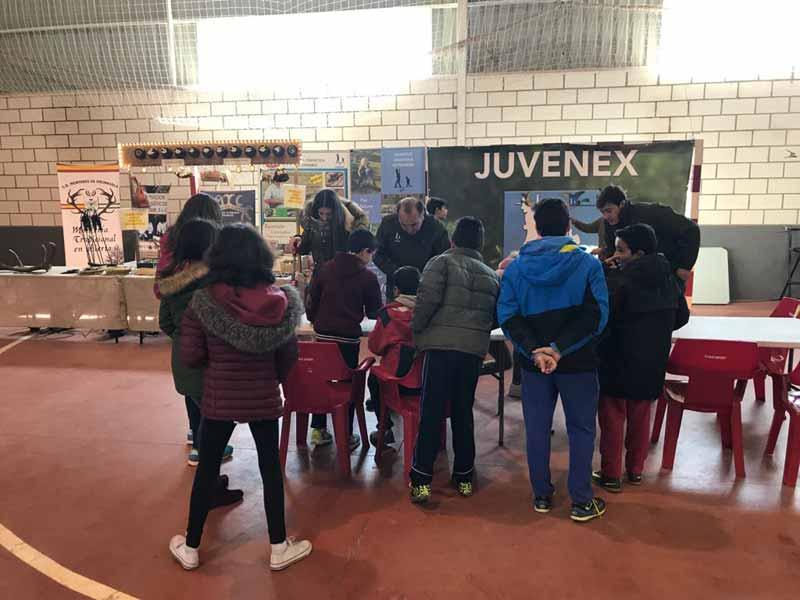 juvenex-bodonal-18-taller2