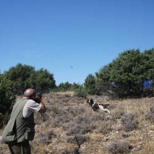 Podemos Andalucía falta a su palabra y traiciona a los cazadores