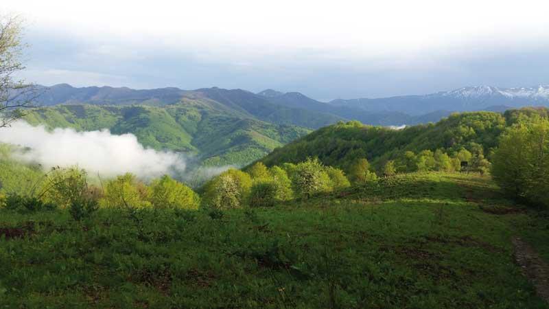 jabalies-y-corzos-balcanes-paisaje