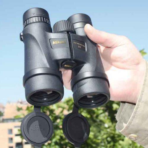 Probamos los Prismáticos Nikon Monarch 5 10×42, perfectos para rececho