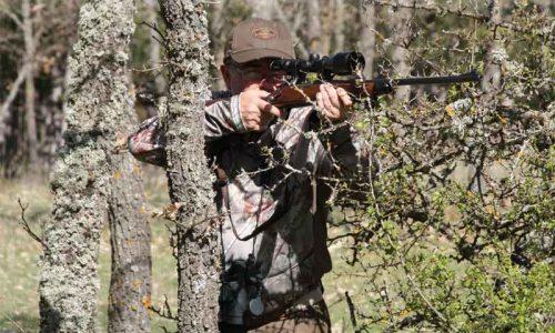 Los mejores rifles y visores para cazar el corzo