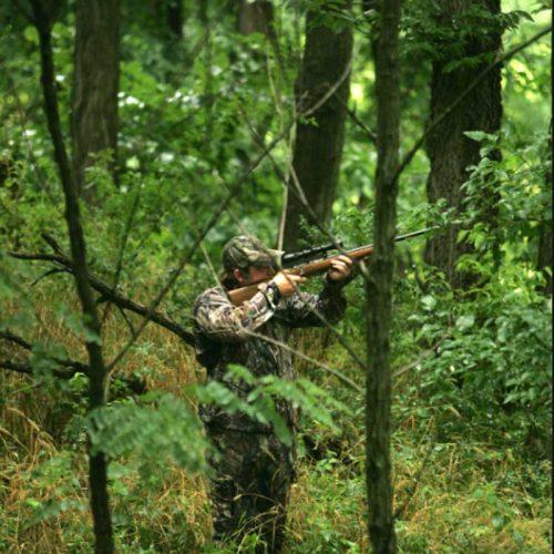 ¿Es delito cazar sin el seguro obligatorio?