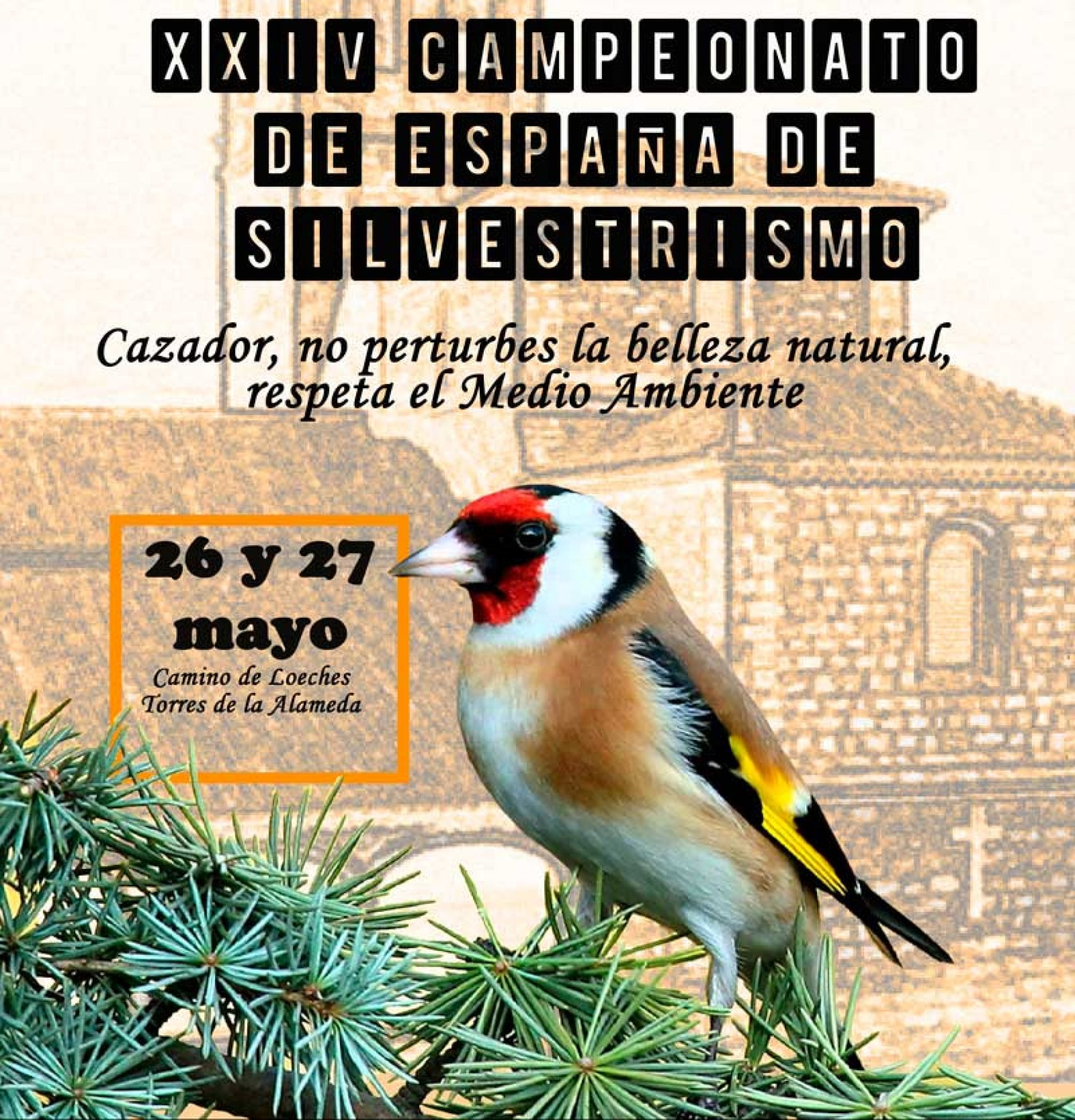 Torres de la Alameda acogerá el XXIV Campeonato de España de Silvestrismo