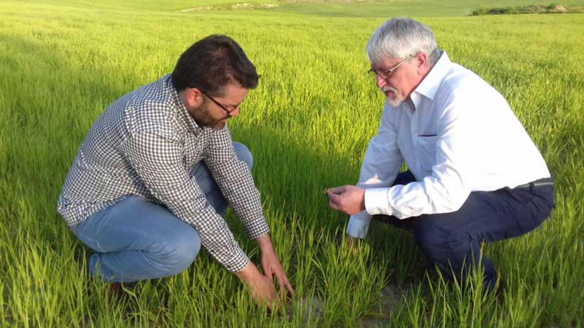 Nick Sotherton, experto en medidas agroambientales, visita 'InterFIELD'