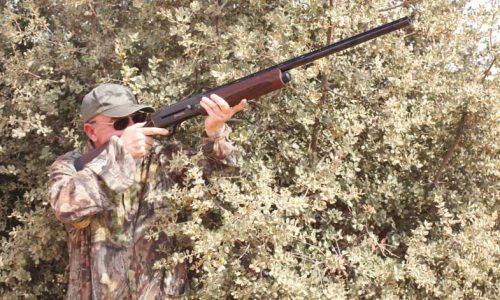 Cómo elegir la mejor escopeta para cazar en media veda desde puesto fijo y/o en mano