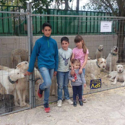 Campillo de Altobuey punto de encuentro de los aficionados al perro de caza