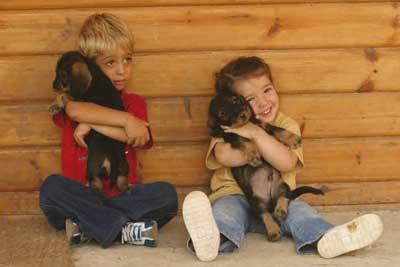 perros-y-ninos-2