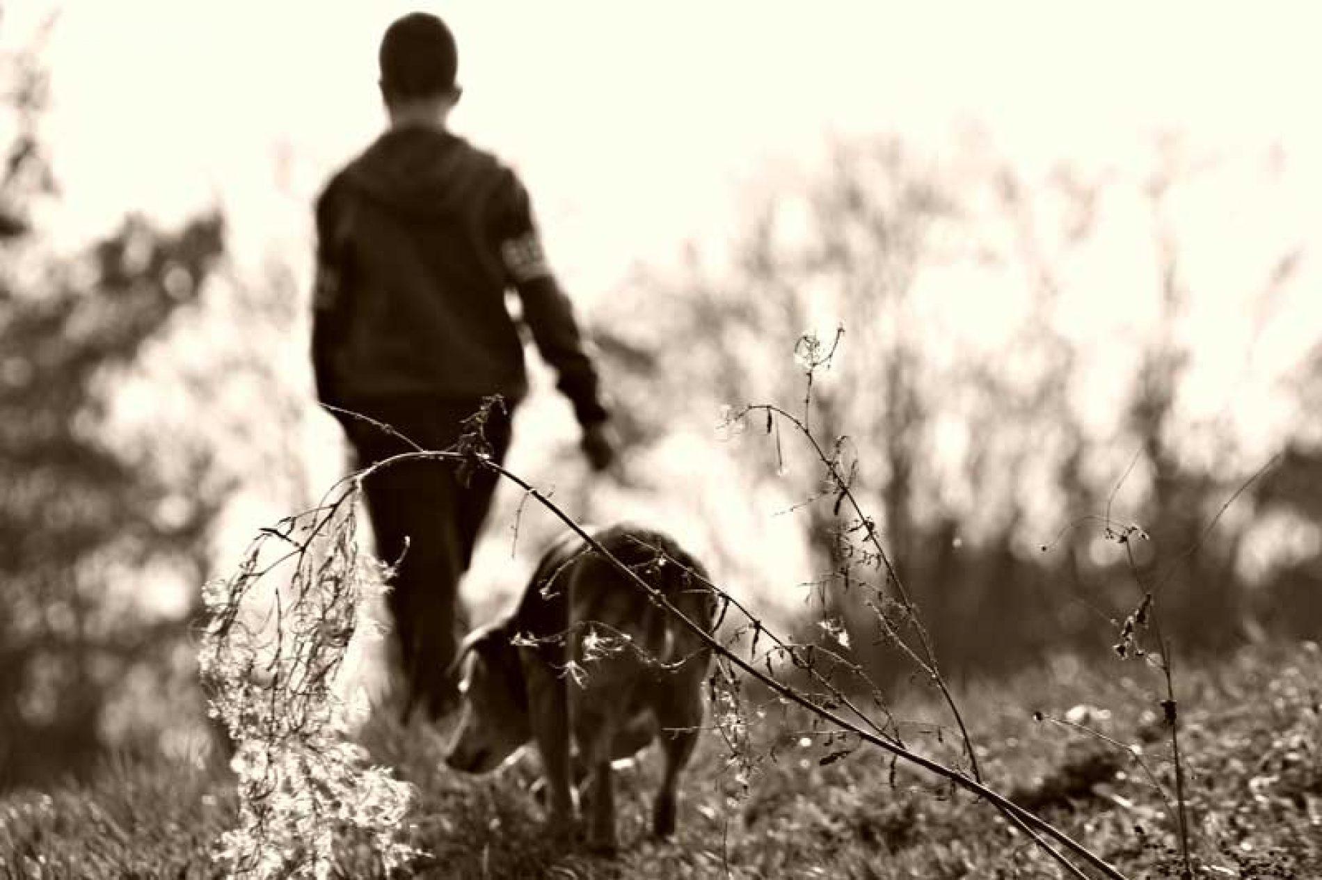 Las 3 etapas de la relación entre perros y niños