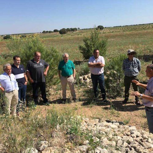 """Constituido el """"Grupo Perdicero"""" de Castilla-La Mancha"""