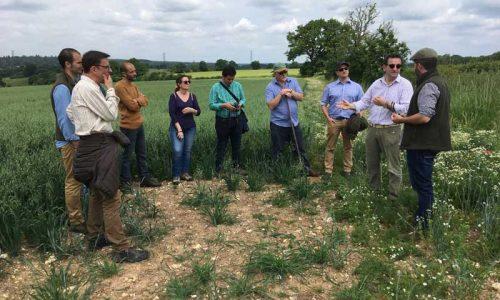 El proyecto 'interFIELD' visita Reino Unido para conocer nuevas medidas agroambientales