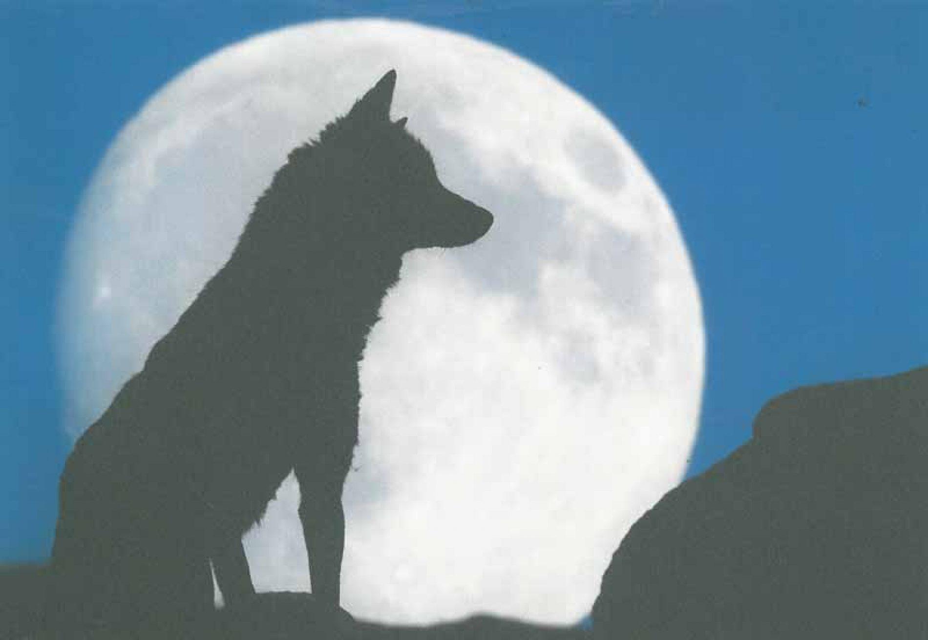 Conversaciones sobre lobos con José Ramón de Camps