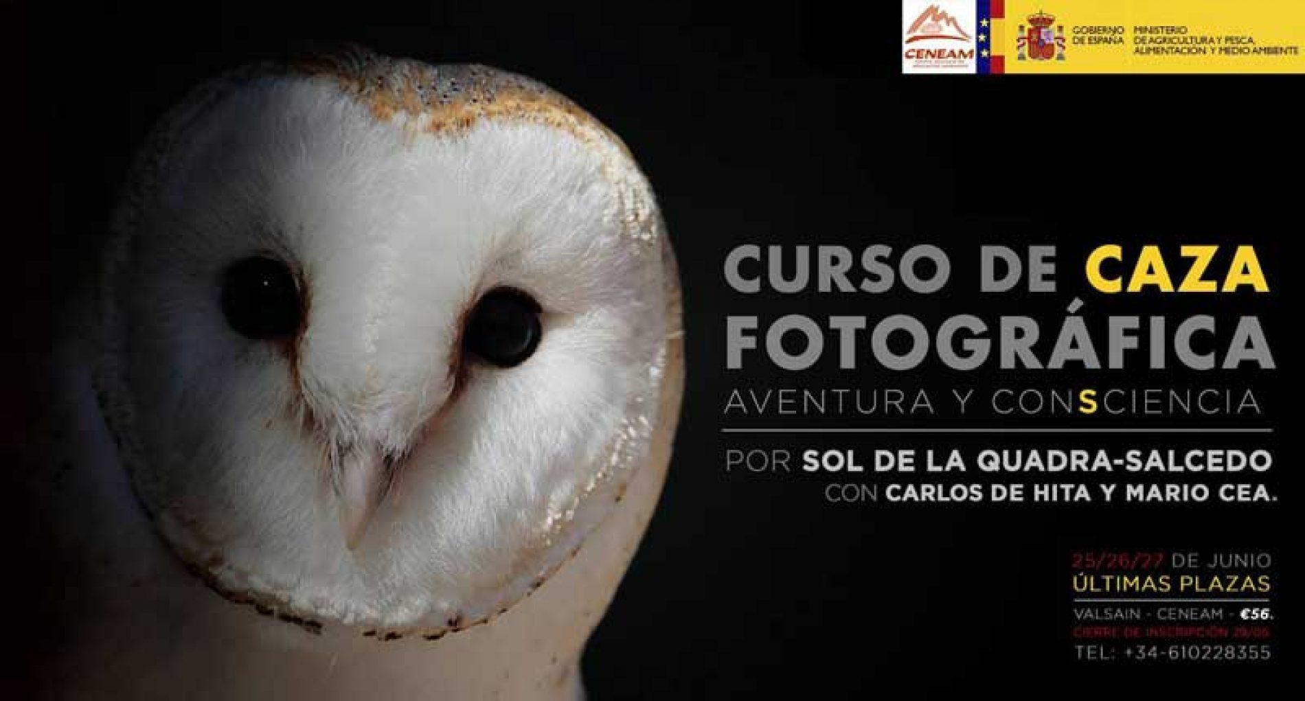 Curso de Caza fotográfica. El Arte de la Caza Fotográfica.